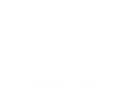David Liebst Photography